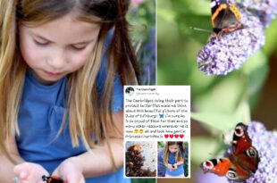 Princess Charlotte Shares Sweet Connection With Prince Philip In The Butterfly Picture